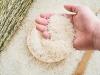 Giá lúa gạo hôm nay 12/10: Lúa đồng loạt tăng, gạo bình ổn