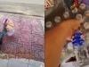 Thấy cụ bà vô gia cư ngồi ăn trước cửa nhà, chủ cửa hàng tạp hoá có hành động khiến tất cả cảm kích