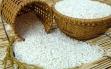 Giá lúa gạo hôm nay 27/9: Giá gạo bật tăng mạnh mẽ