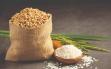 Giá lúa gạo hôm nay 29/9: Giá lúa nhích nhẹ khi gạo đi ngang