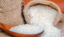 Giá lúa gạo hôm nay 18/9: Gạo bật tăng trở lại phiên cuối tuần