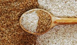 Giá lúa gạo hôm nay 21/9: Giá gạo biến động nhẹ