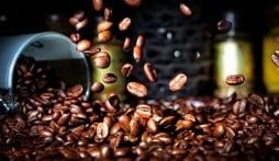 Giá cà phê hôm nay 14/9: Thị trường nội địa không có nhiều biến động