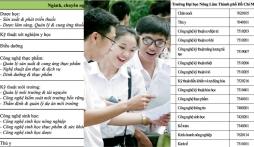 Những trường ĐH tại TP.HCM công bố điểm trúng tuyển theo kết quả thi đánh giá năng lực