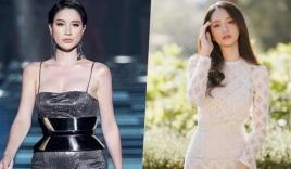 Lộ danh sách những nhân vật đình đám có 'mối thâm thù đại hận' với Trang Trần