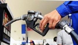 Tin tức giá xăng dầu hôm nay ngày 20/10: Đột ngột tăng khi vừa giảm