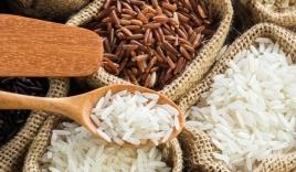 Giá lúa gạo hôm nay 8/10: Lúa đi ngang, gạo giảm nhẹ