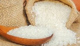 Giá lúa gạo hôm nay 11/10: Đi ngang ngay phiên đầu tuần