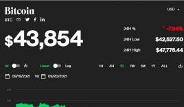 Giá bitcoin hôm nay 21/9: Sụt giảm cực sâu, xuống dưới 42.000 USD