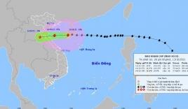 Cập nhật tin bão mới nhất: Bão số 8 chỉ còn cách Thanh Hóa khoảng 420km