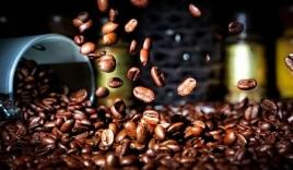 Giá cà phê hôm nay 27/9: Thị Trường nội địa đứng im, giá cà phê thế giới tiếp đà tăng