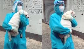 'Dở khóc dở cười' nữ TNV đi test Covid, 'lãi' thêm 1 chú chó đem về