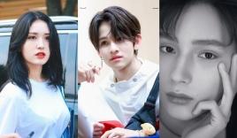 6 tuyệt phẩm con lai Kbiz: Ngắm Kai, Kim Samuel, Lucas, Nancy hoài không chán