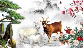 3 con giáp vận may 'trải thảm' từ Tết Trung thu đến cuối năm