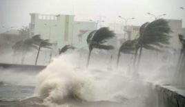 Việt Nam sẽ chịu ảnh hưởng của 3-4 cơn bão từ giờ đến cuối năm
