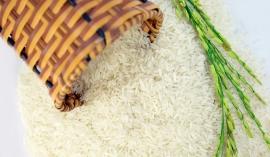 Giá lúa gạo hôm nay 23/9: Tăng giảm trái chiều