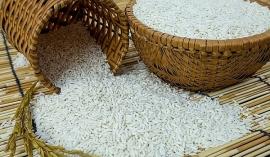 Giá lúa gạo hôm nay 19/10: Biến động nhẹ sau phiên đi ngang