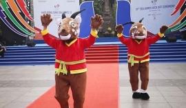 Chủ nhà Việt Nam chốt phương án tổ chức SEA Games 31 vào năm sau