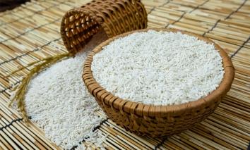 Giá lúa gạo hôm nay 13/9: Giá lúa khởi sắc, giá gạo bình ổn
