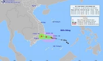 Áp thấp nhiệt đới khẩn cấp chỉ còn cách Ninh Thuận khoảng 250km, gió rất mạnh