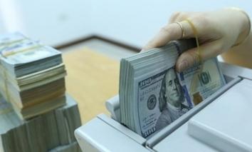 Tỷ giá USD hôm nay ngày 16/9: USD hồi phục và ổn định