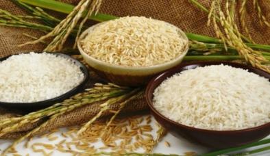 Giá lúa gạo hôm nay 20/9: Giá gạo được đà tăng mạnh