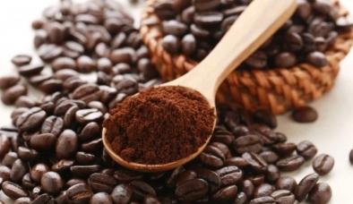 Giá cà phê hôm nay 14/10: Thị trường nội địa tiếp tục leo dốc