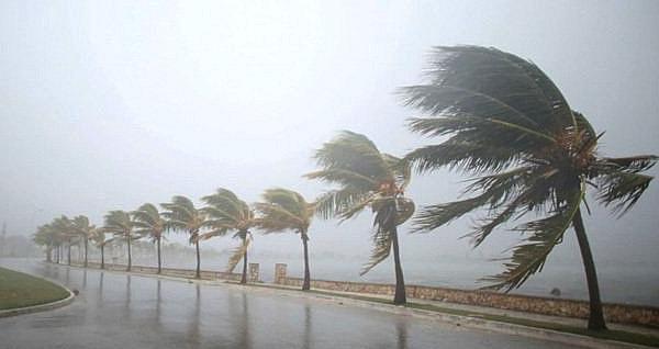 Vùng áp thấp có khả năng mạnh lên thành áp thấp nhiệt đới, di chuyển rất nhanh vào đất liền 2
