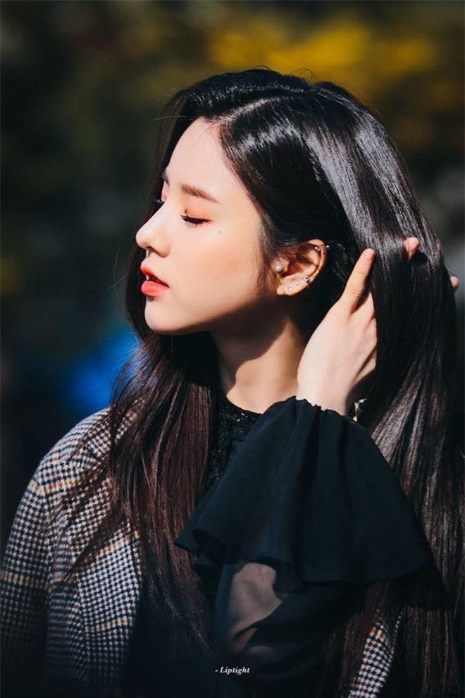 15 mỹ nhân Kbiz sở hữu mũi cao vút: Yoona đáng yêu, Ji Soo như cầu trượt, trùm cuối mới là tuyệt phẩm về cái đẹp 9