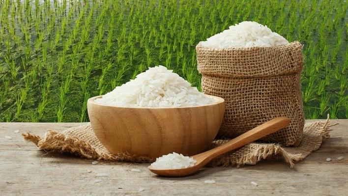 Giá lúa gạo hôm nay 23/8: Giá lúa sụt giảm, giá gạo bình ổn 1