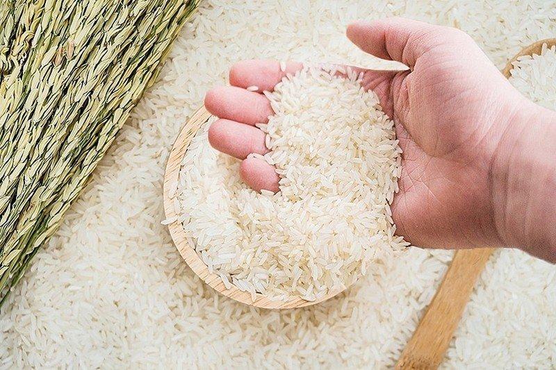Giá lúa gạo hôm nay 25/8: Đột ngột quay đầu tăng trở lại 1