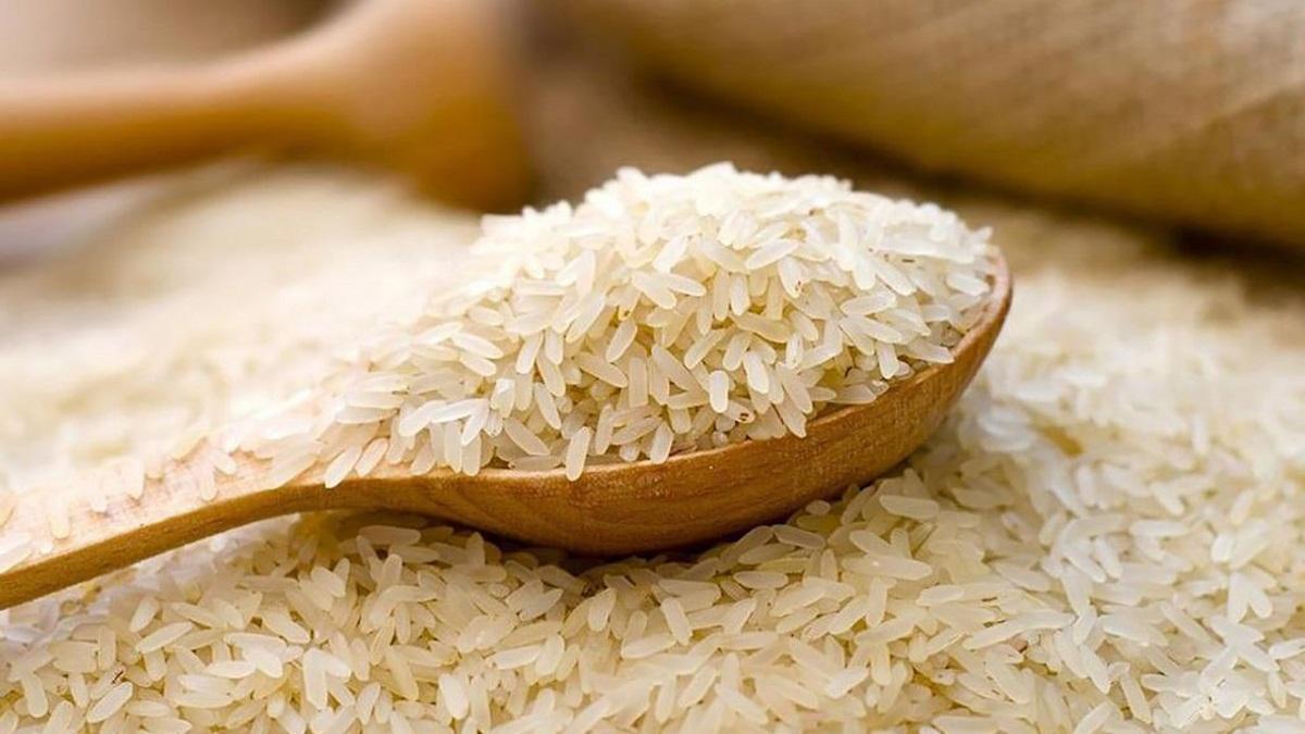 Giá lúa gạo hôm nay 11/9: Cầm chừng ổn định phiên cuối tuần 1