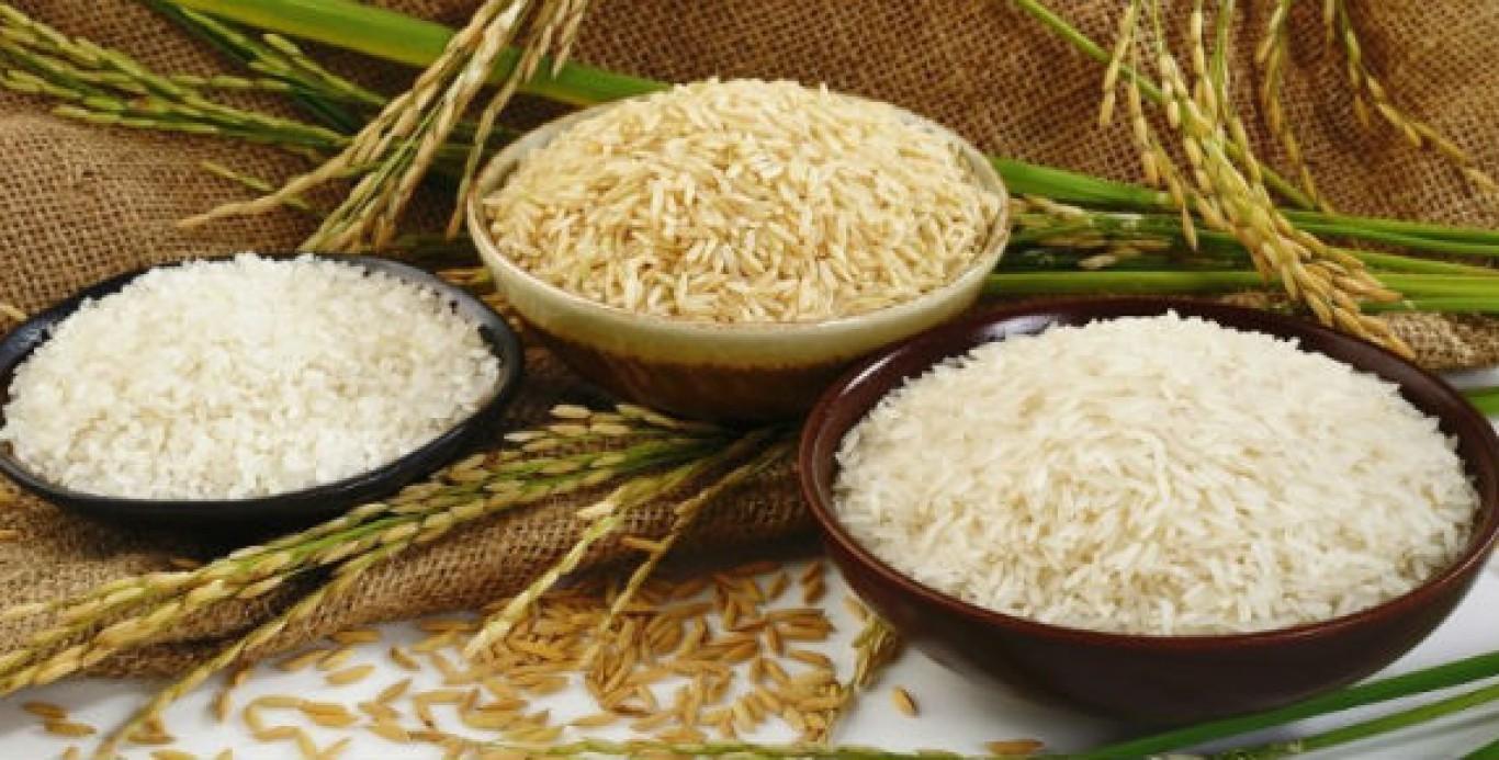 Giá lúa gạo hôm nay 20/9: Giá gạo được đà tăng mạnh 1