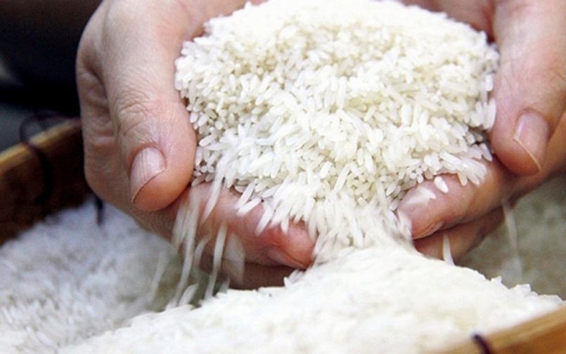 Giá lúa gạo hôm nay 28/9: Giá lúa giảm nhẹ 1