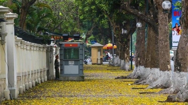 Dự báo thời tiết 8/9: Hà Nội mưa rất to và rải rác có dông 1