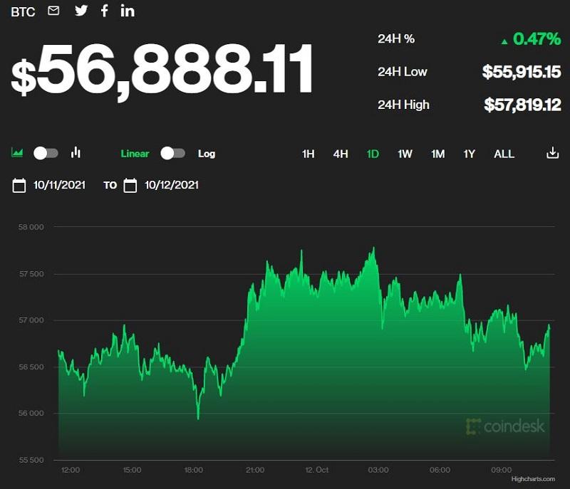 Giá bitcoin hôm nay 12/10: Sắp cán mốc 57.000 USD, thị trường đồng loạt giảm giá 1