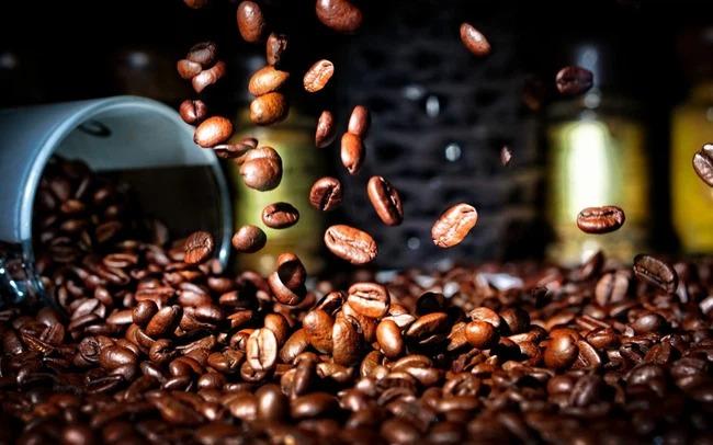 Giá cà phê hôm nay 25/9: Thị trường nội địa giảm nhẹ, giá cà phê thế giới biến động bất ngờ 1