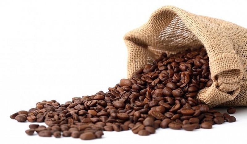 Giá cà phê hôm nay 15/10: Thị trường nội địa đứng yên 1