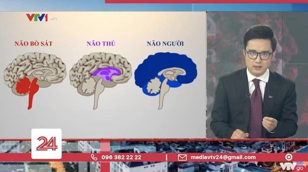 VTV lôi 'não thú' so sánh 'não người', CĐM lên án đã âm thầm làm 1 hành động 1