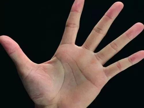 6 nét tướng chỉ tay tay của người có số giàu sang phú quý 1