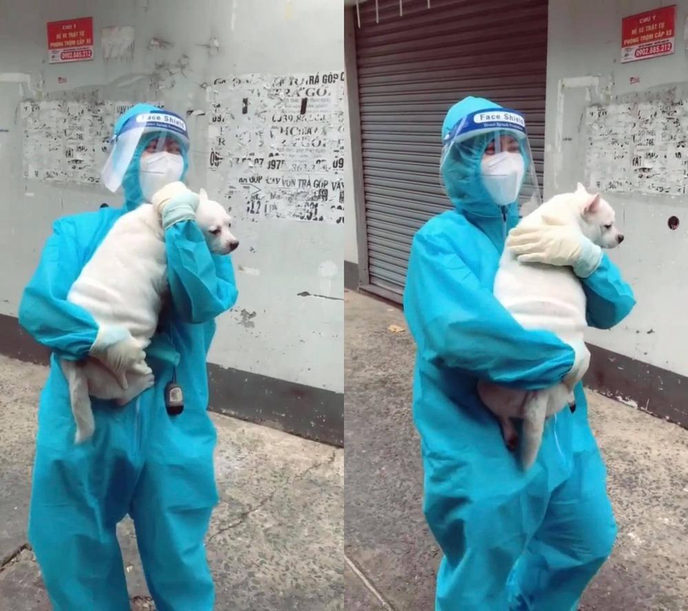 'Dở khóc dở cười' nữ TNV đi test Covid, 'lãi' thêm 1 chú chó đem về 1