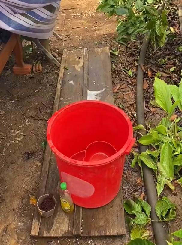 Trở về từ TP.HCM, cô gái được ba mẹ chuẩn bị cho ra vườn tự dựng lều cách ly: 'Hẹn 14 ngày sau gặp lại' 3