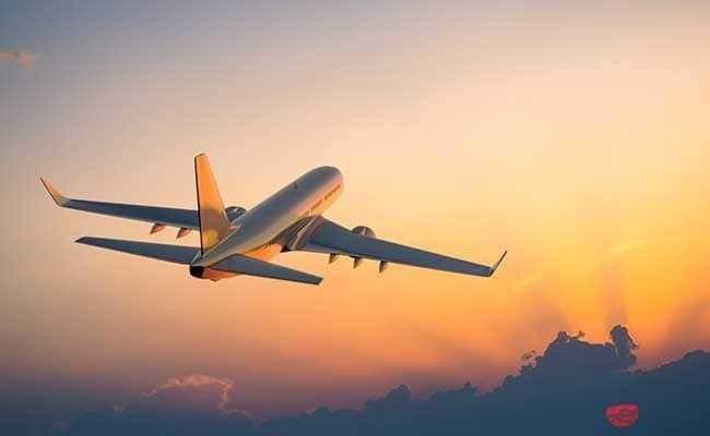 Máy bay chở 29 người biến mất bí ẩn tại Viễn Đông, Nga 1