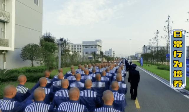 Viễn cảnh Ngô Diệc Phàm học thêu thùa, may vá, sống lành mạnh trong tù khiến Cnet 'bật ngửa' 6