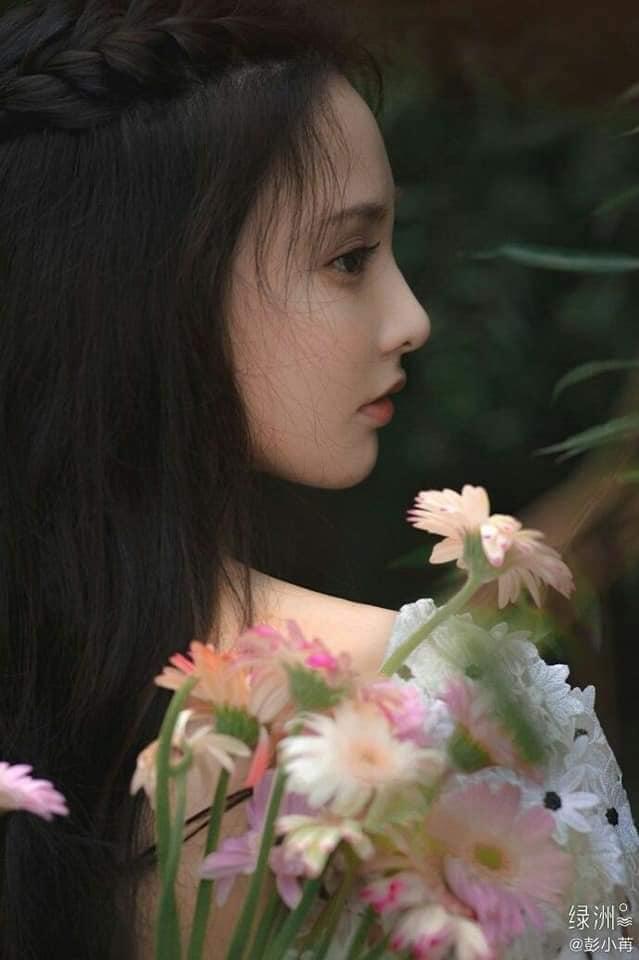 Dương Mịch, Lệ Dĩnh, Nhiệt Ba và 15 đại mỹ nhân Cbiz khoe visual 'tươi không cần tưới' khi sống ảo với hoa 12