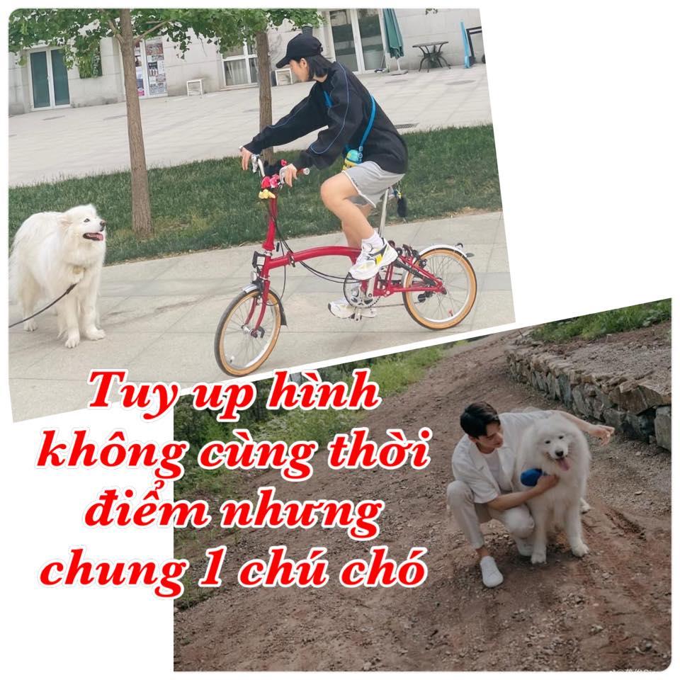 Tin nóng Cbiz ngày 11/10: Cung Tuấn có 'hint' hẹn hò, Trịnh Sảng đại náo MXH, gian lận chưa từng có, Nhất Bác bị ép bỏ nghề 5